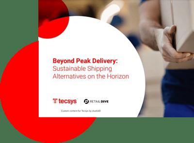 Beyond Peak Delivery Landing Page